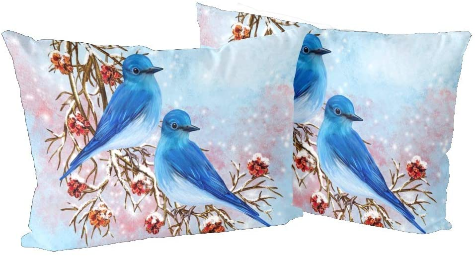 CUXWEOT Pillow Pillowcase Covers Standard Size 20x30 Set of 2 Rectangle Pillow Cases Protector for Home Couch Sofa Bedding Decorative Two Blue Birds