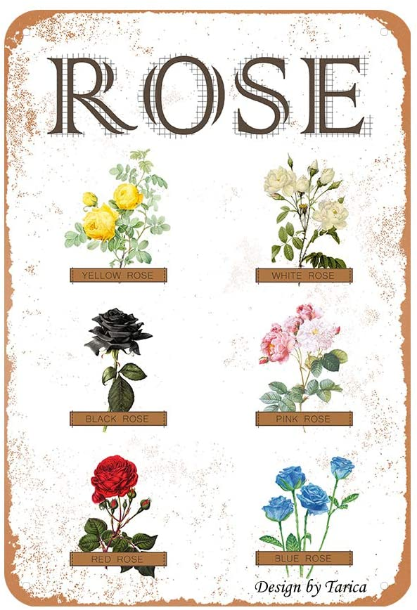 Rose Varieties Iron Poster Painting Tin Sign Vintage Wall Decor for Cafe Bar Pub Home Beer Decoration Crafts