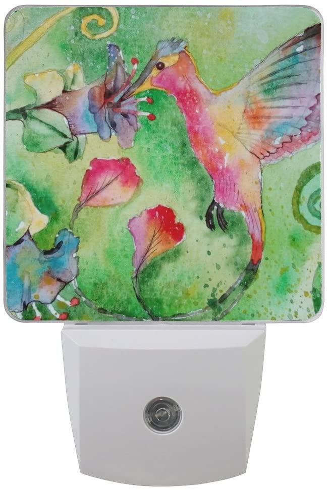 Printing Bird Green Patterns on Plug-in LED Night Light Warm White Nightlight for Bedroom Bathroom Hallway Stairways(0.5W 2-Pack)