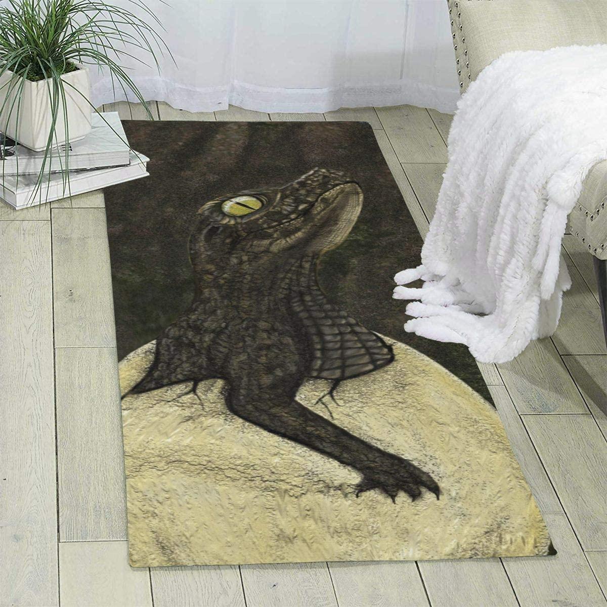 Pooizsdzzz Carpet 70 X 24 X 6mm Crocodile Egg Modern Area Rug for Bedroom Living Room Floor Home Decor