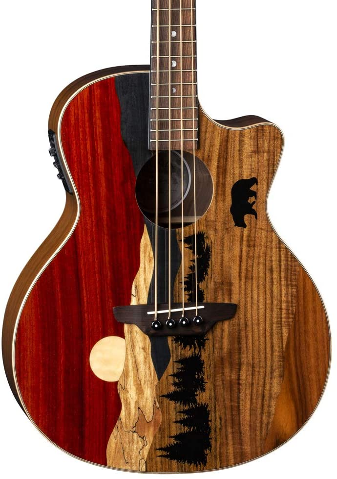 Luna Guitars Vista Bear 4 String Acoustic/Electric Bass with Case, Right (VISTABEARBASS)