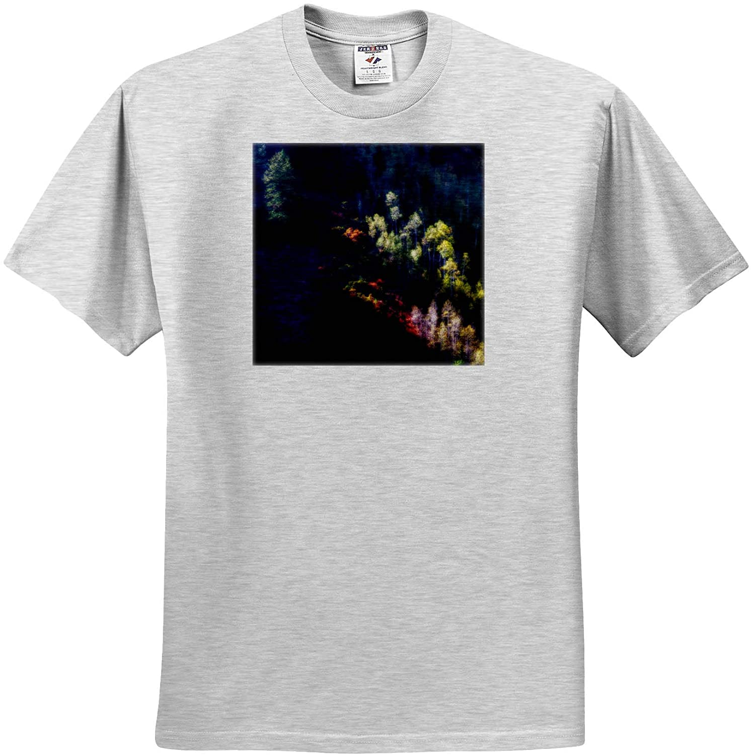 3dRose Mike Swindle Photography - Landscapes - Trees Highlighted by The Setting Sun - Youth Birch-Gray-T-Shirt Small(6-8) (ts_330264_28)