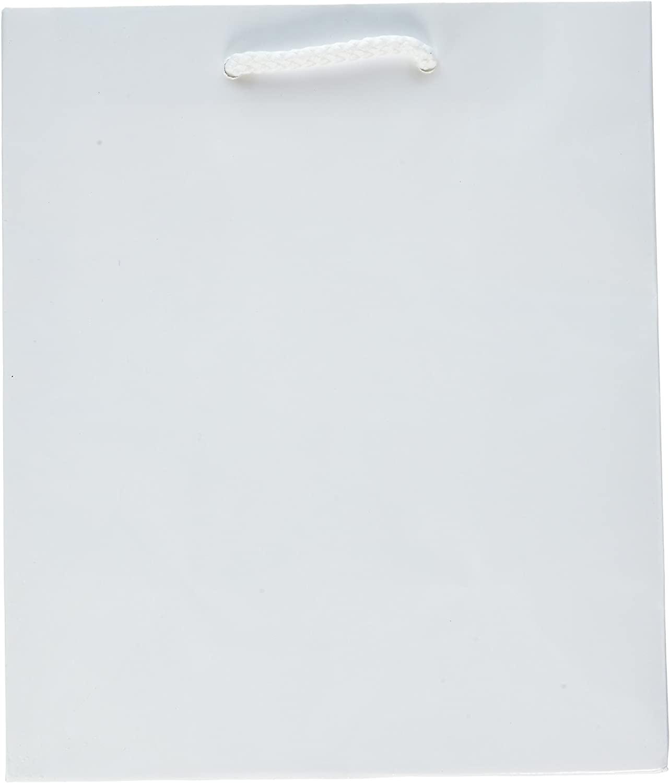 White Solid Glossy Bag Medium
