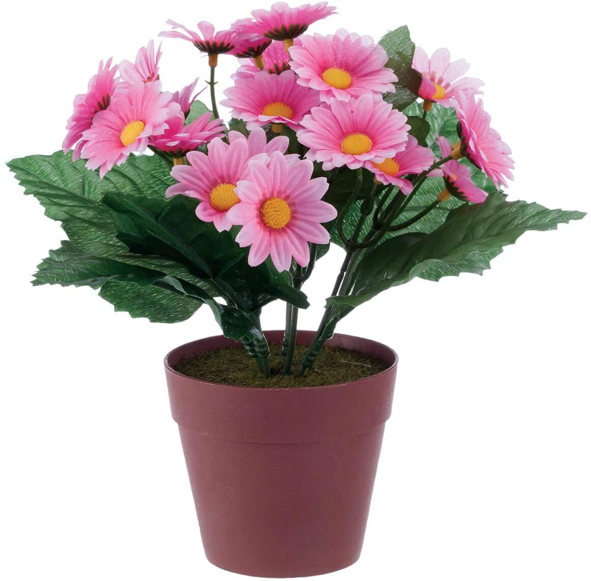 """OakRidge Mini Potted Daisy, Faux Plant in Resin Pot, Pink, 8 ½"""" High"""