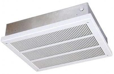 Heavy-Duty Ceiling Mounted Heater