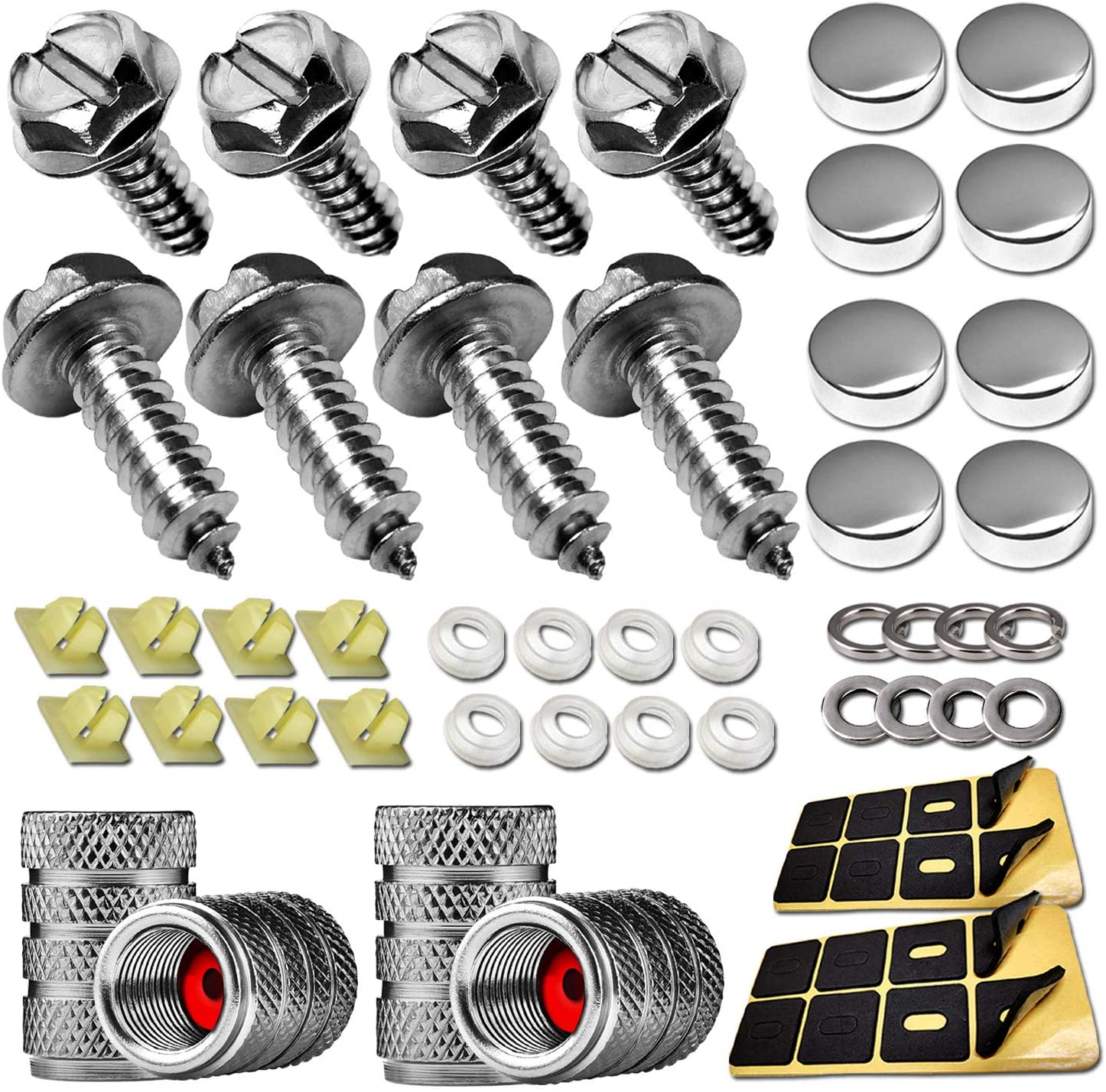 Stainless Steel License Plate Screws- Anti Rust Fastener Kit for Front and Rear Car Tag Frame Mounting, M6(1/4