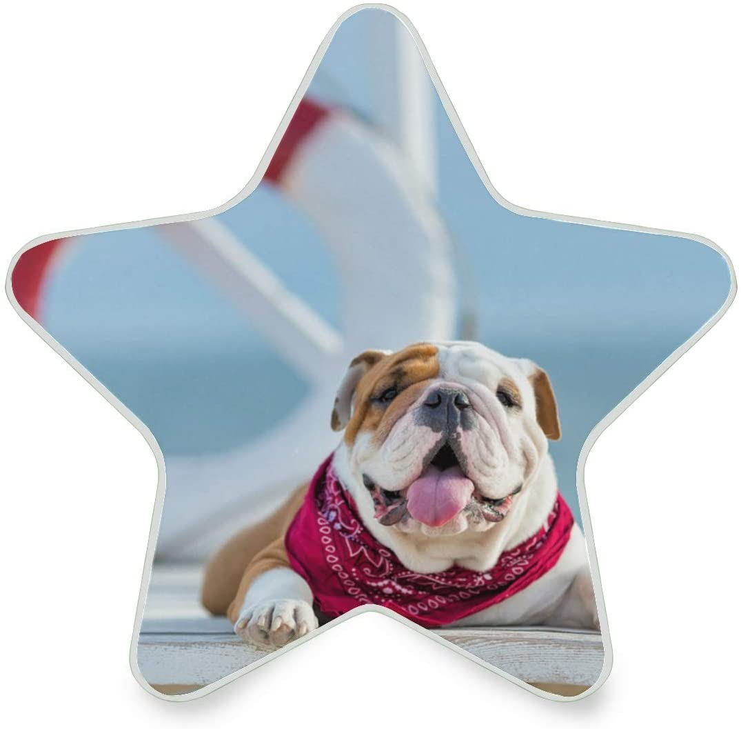 LED Night Light Star Shape Loose Pulley Dog Ultra-Slim, and Cool-Touch Dusk to Dawn Sensor Night Lamp Kids Adults and Nursery Decor Night Light
