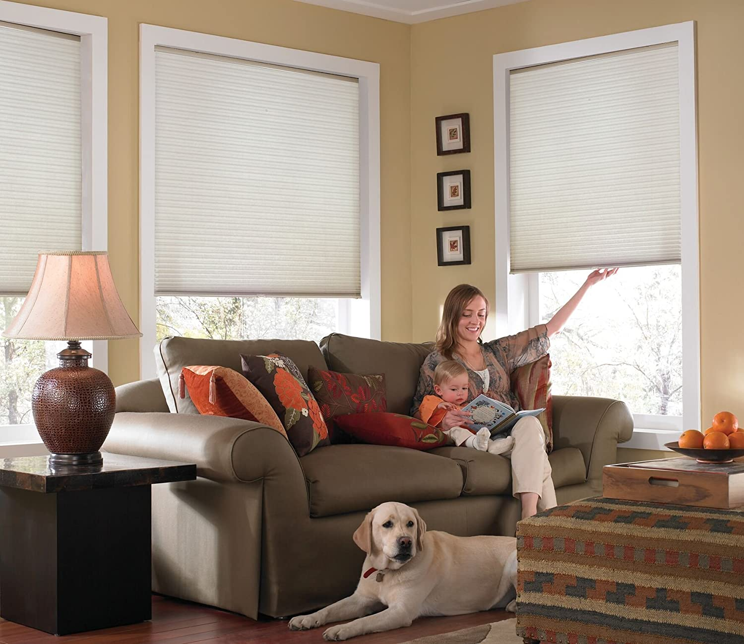 Windowsandgarden Custom Cordless Single Cell Shades, 24W x 40H, Cool White, Light Filtering 21-72 Inches Wide