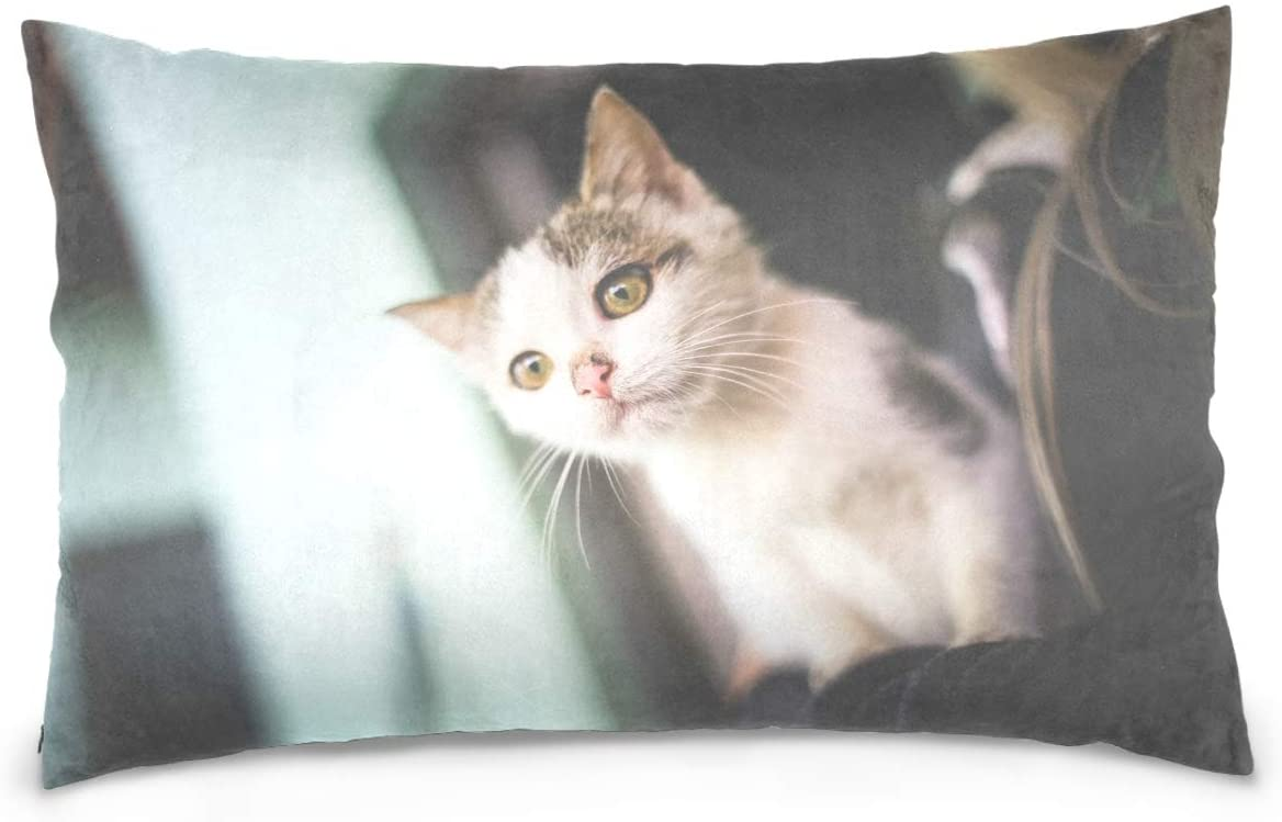 Kaariok 3D Cute White Cat Animal Kitten Cotton Pillowcase Standard Size Double Printed Soft Pillow Case Cover Protector with Zipper Home 20 X 26 Inches