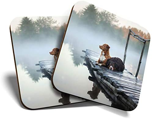 Great Coasters (Set of 2) Square/Glossy Quality Coasters/Tabletop Protection for Any Table Type - Misty Lake Sunrise Dogs Pet Dog #15900