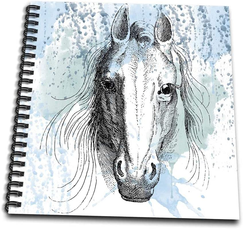 3dRose db_179100_1 Blue Watercolor Horse Drawing Book, 8 by 8-Inch