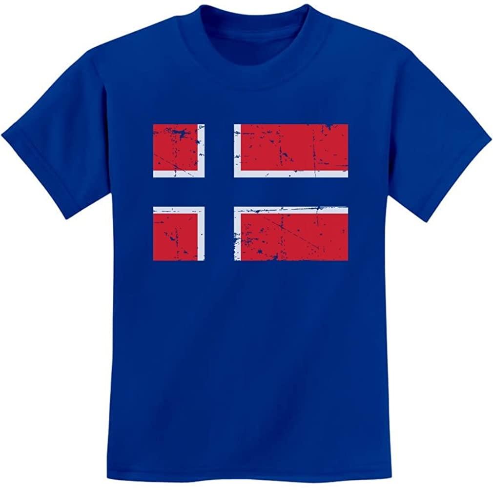 TeeStars - Vintage Norway Flag Retro Style Norwegian Youth Kids T-Shirt
