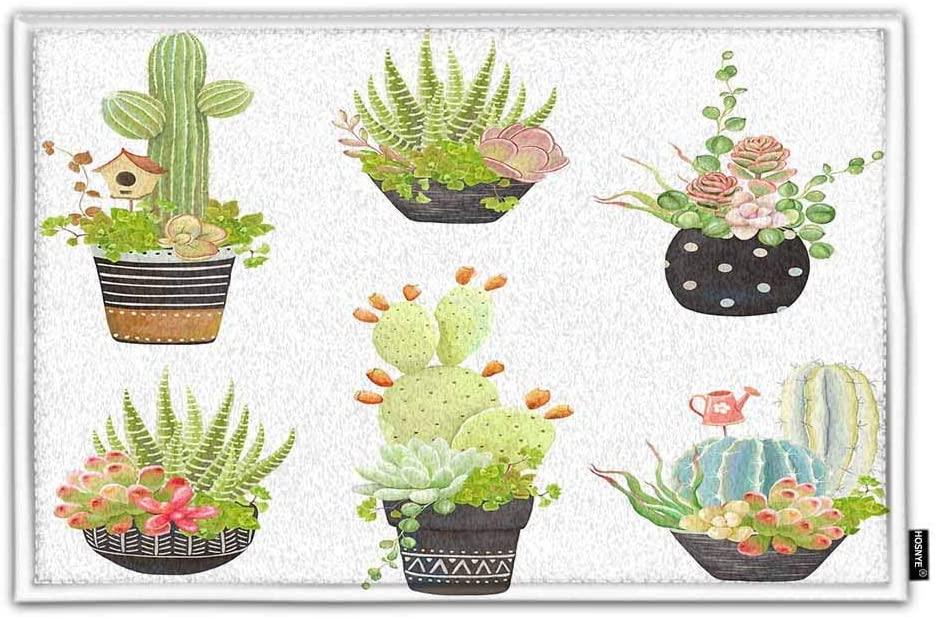 HOSNYE Flower Pots Non Slip Door Mat Cacti and Succulents Garden Sightseeing Home Bathroom Bath Shower Bedroom Mat Toilet Floor Door Mat