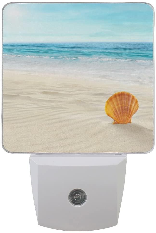 Naanle Set of 2 Sea Shell On Tropical Beach Summer Blue Ocean Cloud Sky Nautical Seashells Auto Sensor LED Dusk to Dawn Night Light Plug in Indoor for Adults