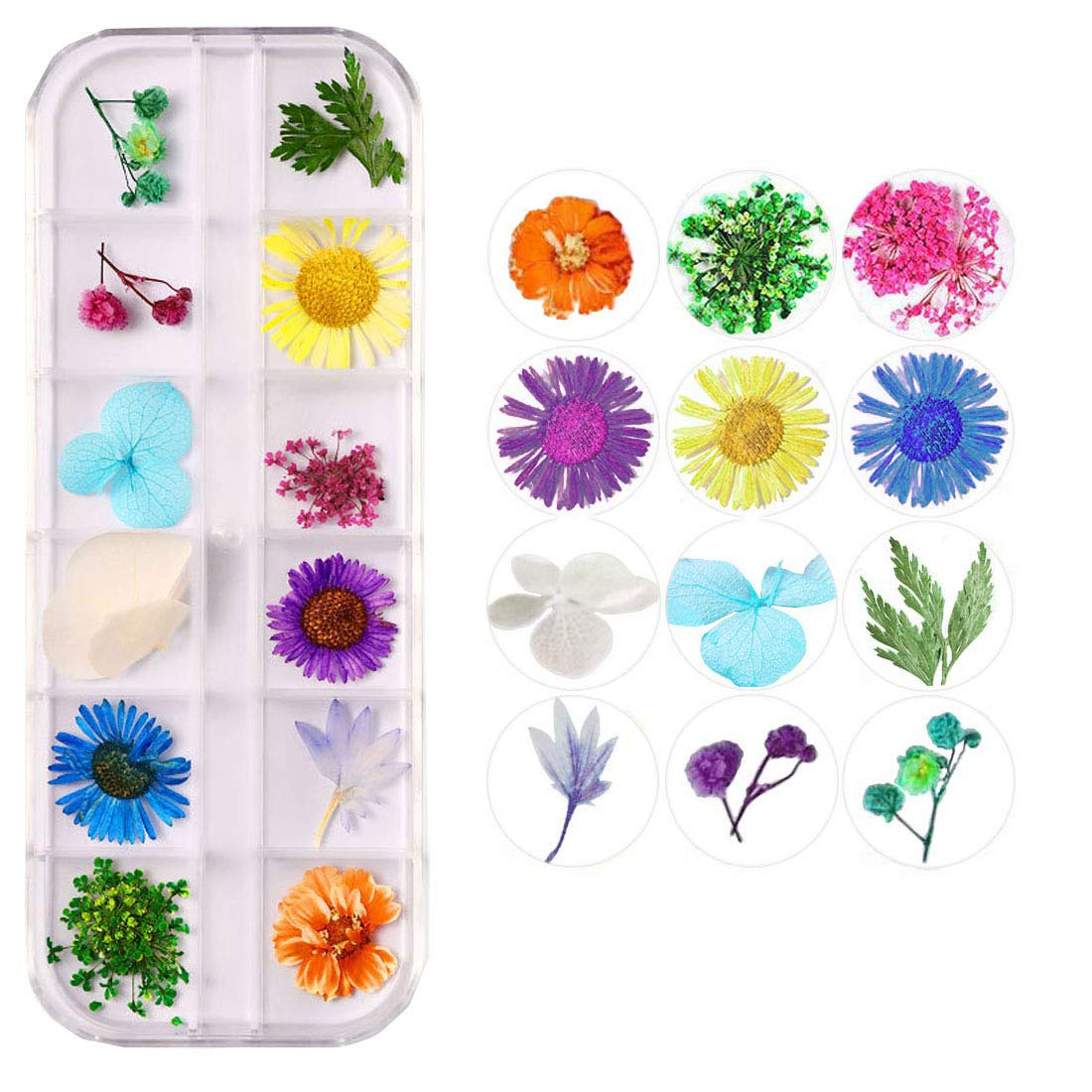 Nail Art Real Dried Flower Set 12 Colors Nail Dried Flowers, 3D Nail Art Real Flowers Nature Dry Petals Leaves Decor for Nail Art Design Manicure Decoration