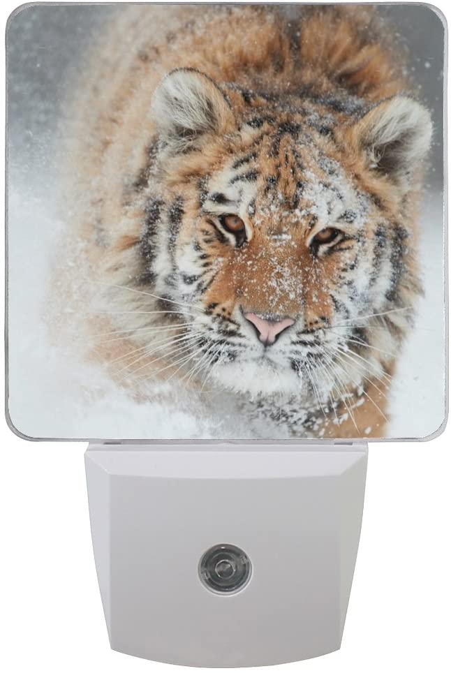 Naanle Set of 2 Siberian Tiger Running Snow Storm Winter Snowflake Auto Sensor LED Dusk to Dawn Night Light Plug in Indoor for Adults