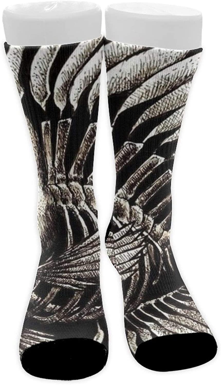 Adult Crew Socks Athletic Compression Socks Tube Socks Soccer Socks