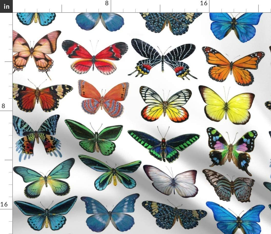 Spoonflower Fabric - Colorful Butterflies Butterfly Painting Kids Printed on Petal Signature Cotton Fabric by The Yard - Sewing Quilting Apparel Crafts Decor