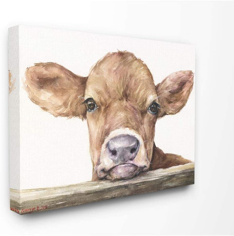 Stupell Industries Cute Baby Cow Animal Watercolor Painting Canvas Wall Art, 36 x 48, Multi-Color