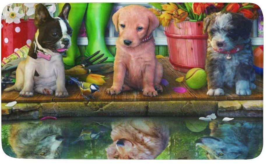 XIUCOO Indoor Outdoor Doormat Non-Slip Backing Ultra Absorbent Mud Funny Dogs Door Mat Decorative Entry Rug Garden Kitchen Mats 23.6 x15.7 Inch