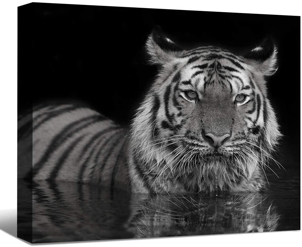 SENEW Animal Canvas Wall Art for Bedroom,Living Room,Office,Tiger Framed Canvas Art for Home Decor,20