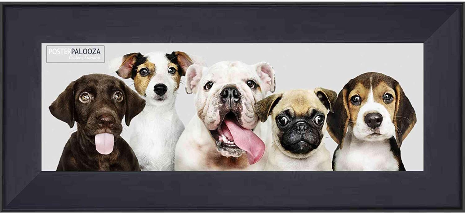 Poster Palooza 4x12 Contemporary Black Wood Canvas Floater Frame - Canvas Mounting & Hanging Hardware Included