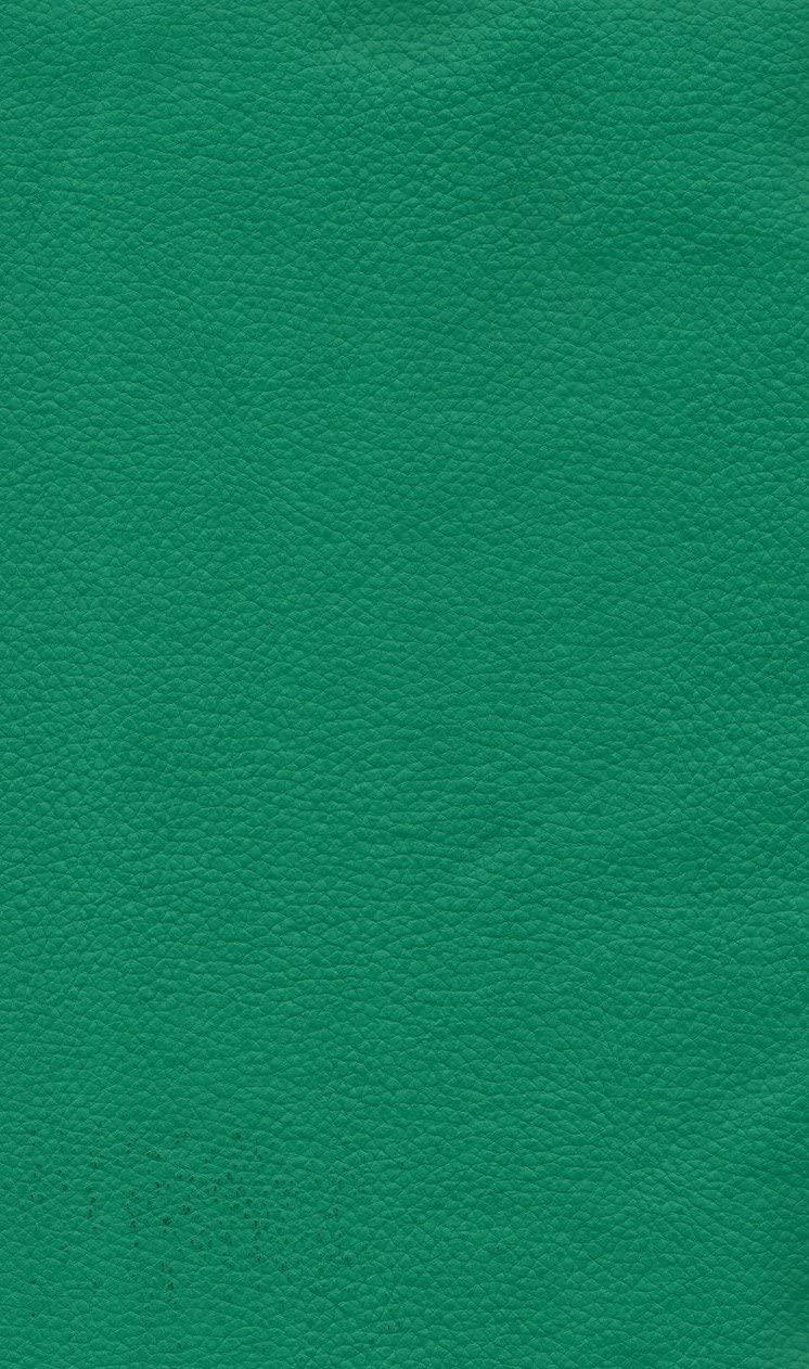 Marine Vinyl Ultramarine Champion Outdoor/Indoor Pebble Grains Fabric 54