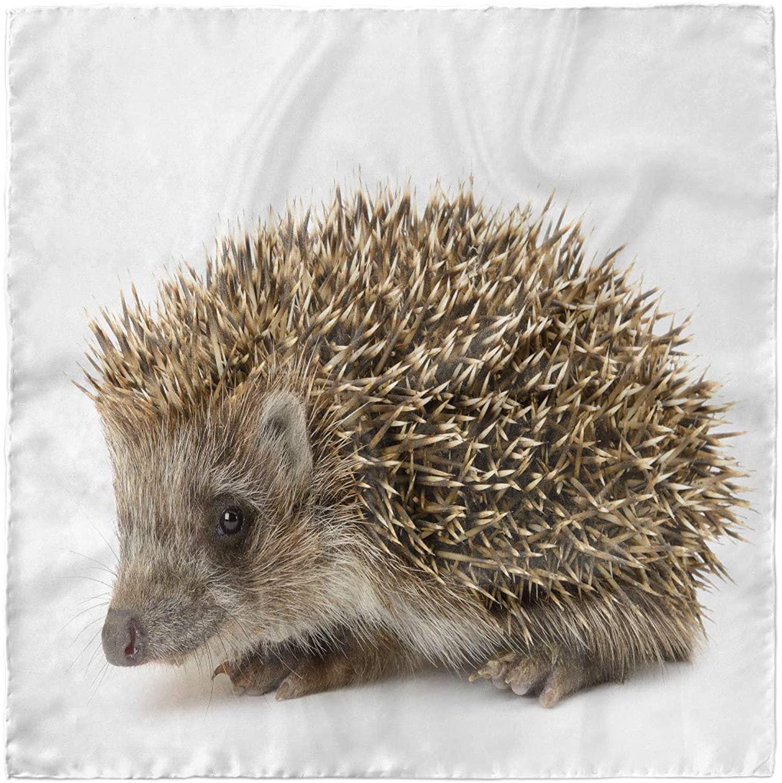 Ambesonne Hedgehog Head Scarf, Small Mammal, Hair Wrap