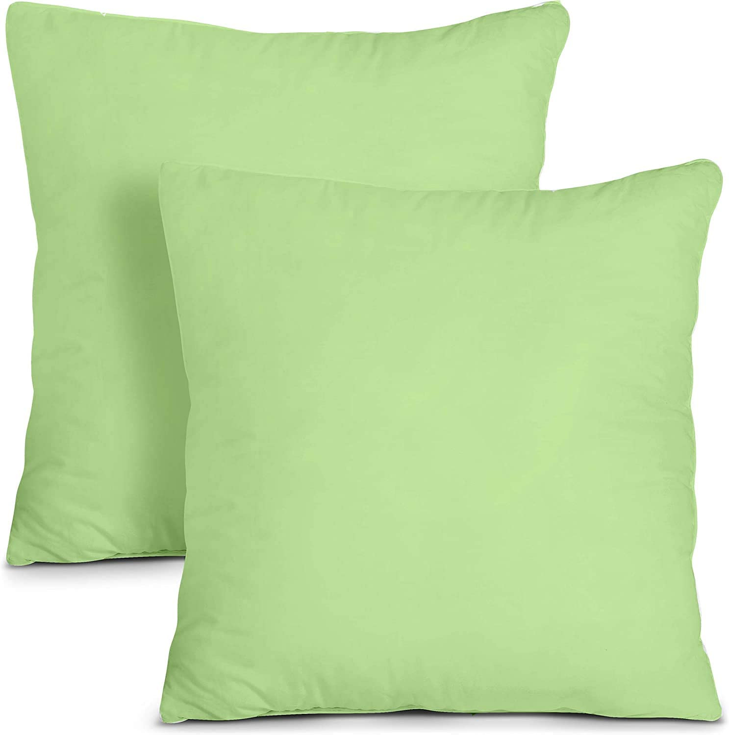 Basics Decor Luxurious - Pillow Sham - 100% Egyptian Cotton- Pillow Cover with Zipper Closer - 1000 TC (Big Euro Sized 28 by 28 inch) - Sage Green - Set of 2