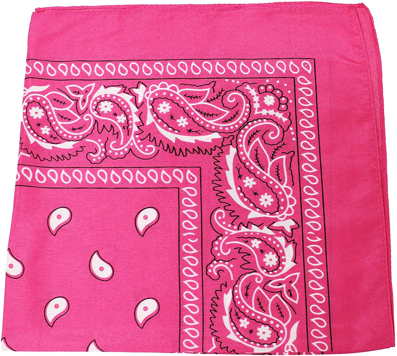 Pack of 48 Paisley Cotton Bandanas Novelty Headwraps - Bulk Wholesale - 22