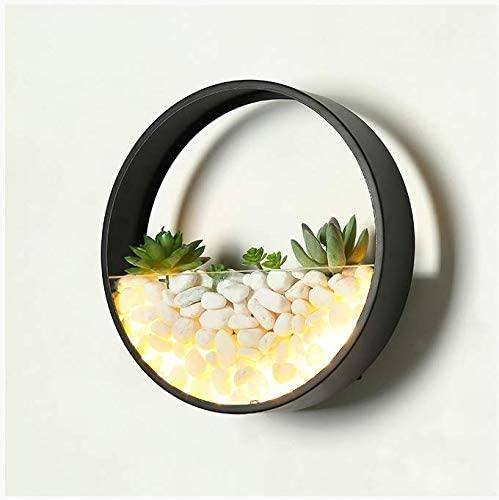 CLFINE Ultra Modern LED Artificial Mini Wall Planter Round Metal Glass Indoor Wall Light (Black)