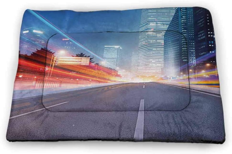 DayDayFun Urban Pet Mat for Crate Asphalt Road and Modern Cityscape Illuminated Metropolis Nightlife Buildings Dusk Pet Mats for Food and Water Multicolor