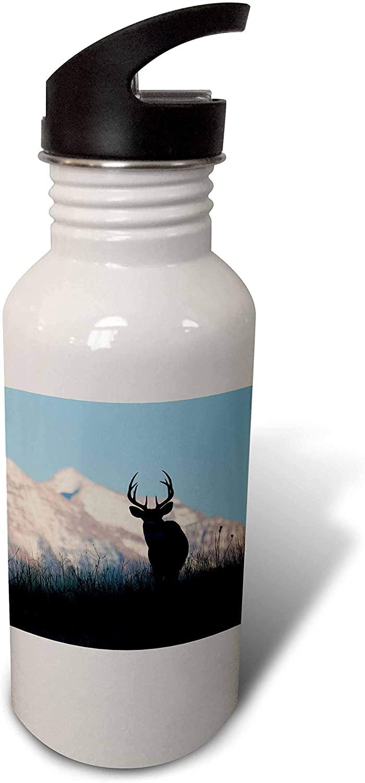 3dRose Danita Delimont - Animals - White-Tail Deer Buck - Water Bottles (wb_331693_2)