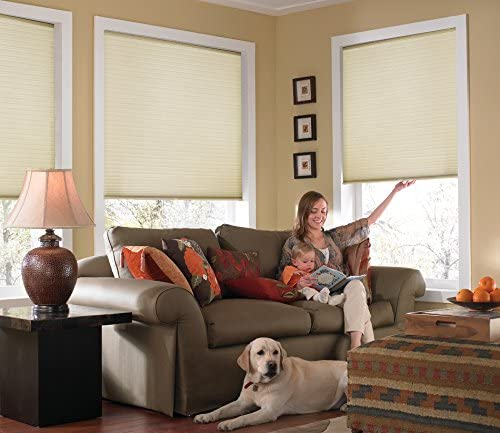 Windowsandgarden Custom Cordless Single Cell Shades, 24W x 42H, Daylight, Light Filtering 21-72 Inches Wide