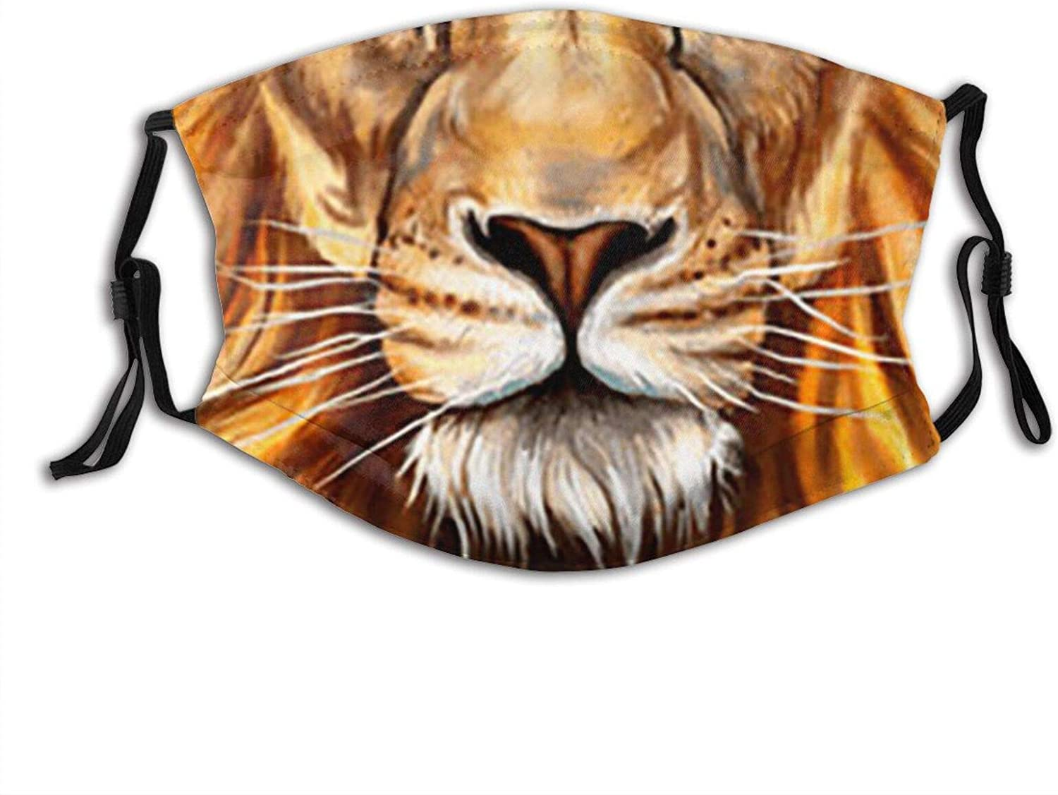 Head Of Lion King Cloth Face Mask With Filter Pocket Washable Reusable Face Bandanas Balaclava With 2 Pcs Filters