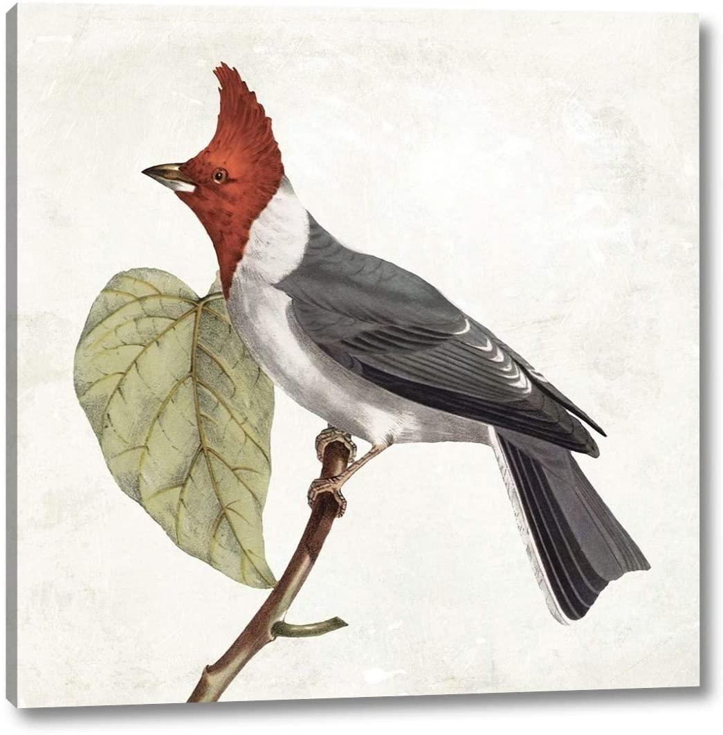 Lovely Birds 2 by Jace Grey - 16