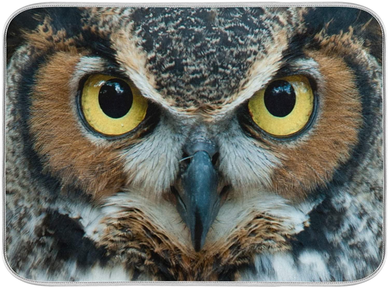 Oarenol Animal Owl Eye Dish Drying Mat Absorbent Kitchen Countertop Mat 16 x 18 Inch