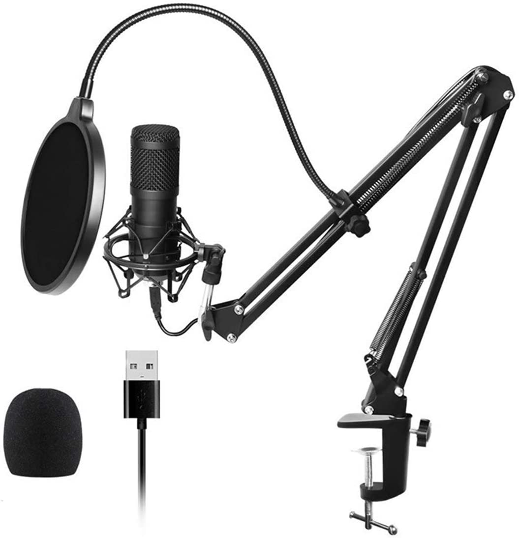 SH-RuiDu USB Plug-n-Play Sound Recording Condenser Microphone with Filter Mount Bracket for Live Broadcasting Netmeeting Professional Recording