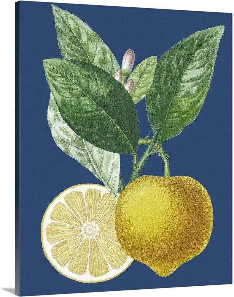 French Lemon on Navy II Canvas Wall Art Print, 24