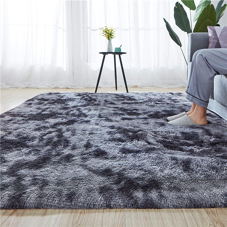 Rainlin Soft Fluffy Bedroom Rugs Indoor Shaggy Plush Area Rug College Dorm Living Room Home Decor Floor Carpet Shag Non-Slip Nursery Rugs 4x5 Feet, Dark Grey