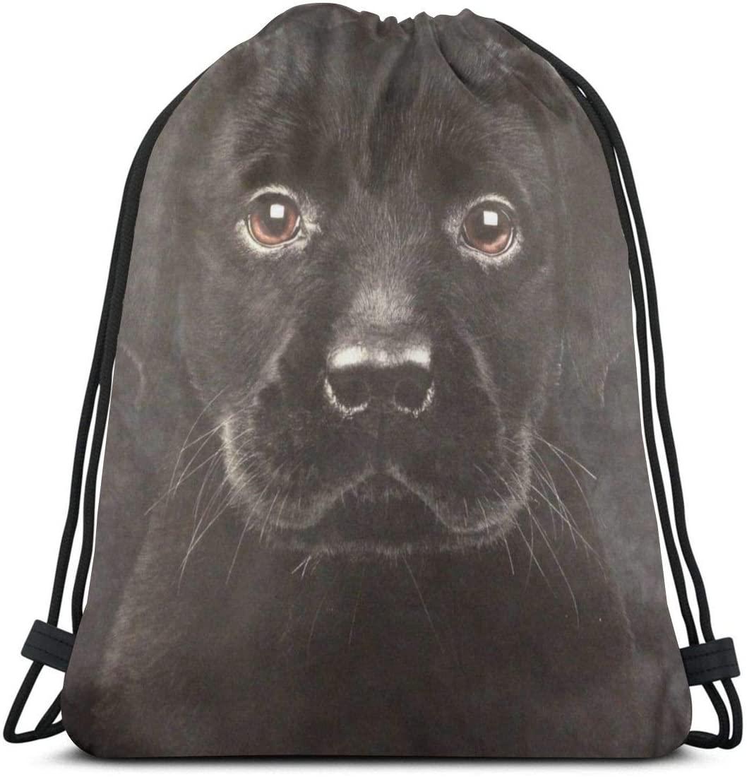Gym Drawstring Bags Backpack Labrador Retriever Sackpack Tote For Sport Storage Shoe Organizer Space Saving Yoga Children