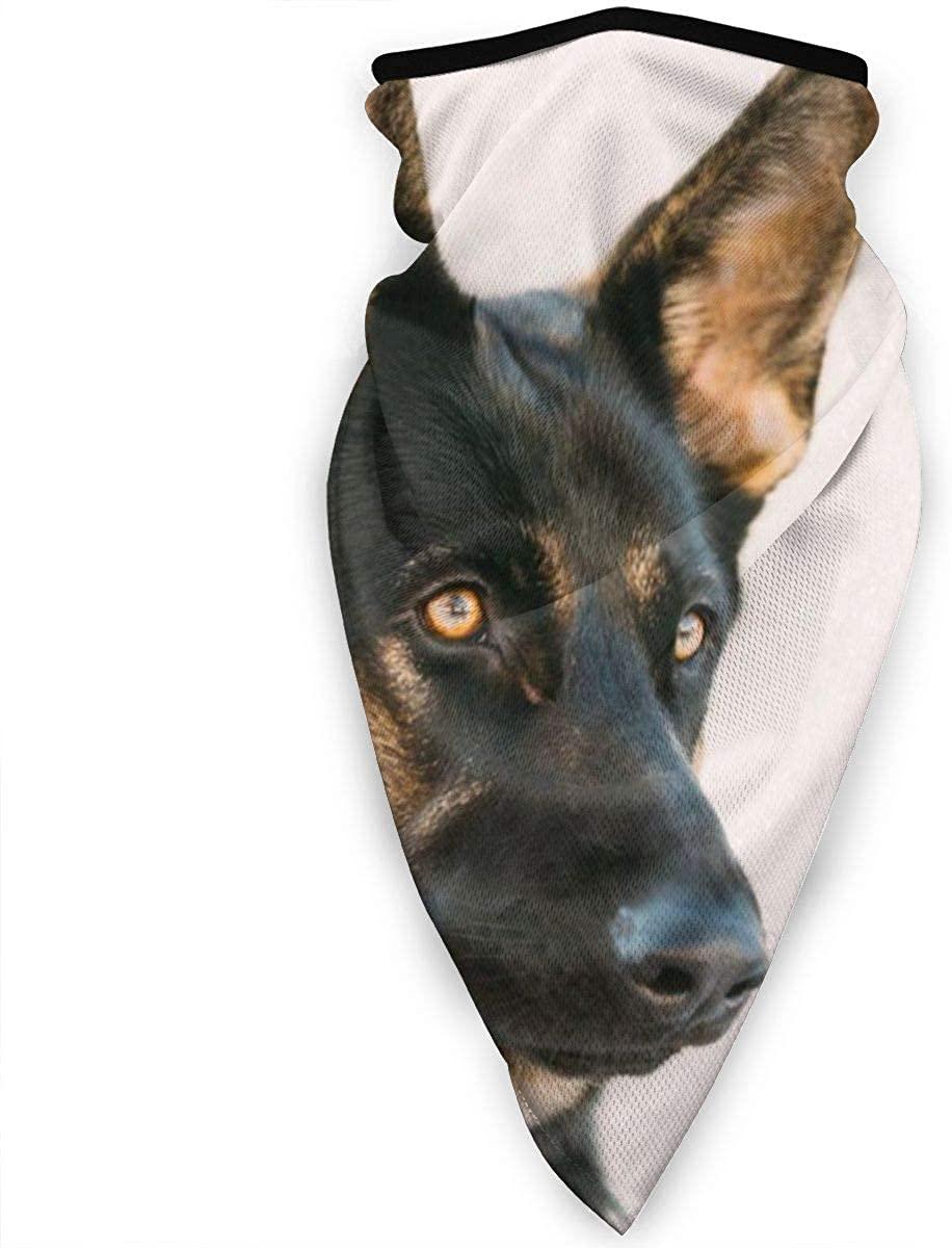 Bandana German Shepherd Dog Neck Gaiter Winter Windproof Face Masks for Men Outdoor Motorcycling